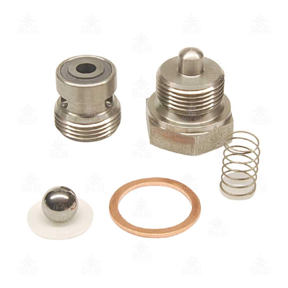 400004-400447R valvola per pompa elettrica copia